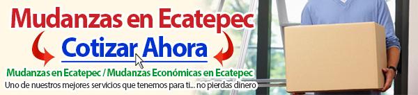 Mudanzas en Ecatepec